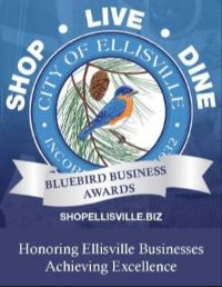 Bluebird Business Awards Logo